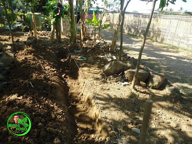 FOTO : Galian tanah untuk pondasi