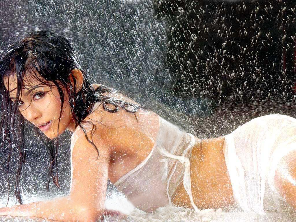 Hot bollywood arora actress Amrita