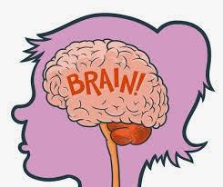 Otak, Minda