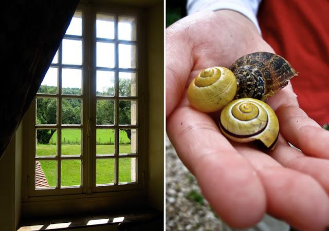 Escargots, France