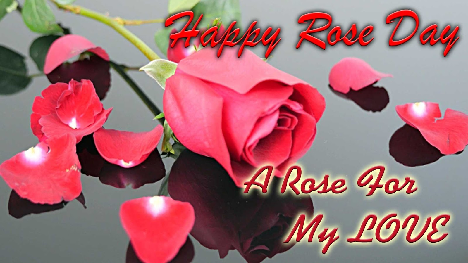 Rose day quotes for facebook happy valentines day quotes 2017 a rose is a symbol of my love for you its petals shine in beauty its thorn show its pain buycottarizona