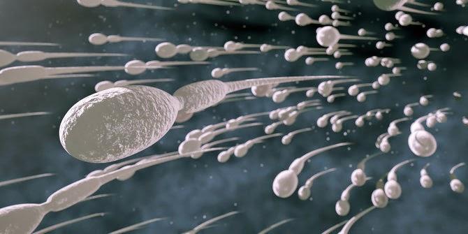 http://infoprodukgreenworld.blogspot.com/2015/04/obat-pengental-sperma-encer-untuk-pria.html