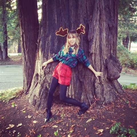 wildlife, antlers, moose, deer, Christmas, Fashion, plaid, redwoods