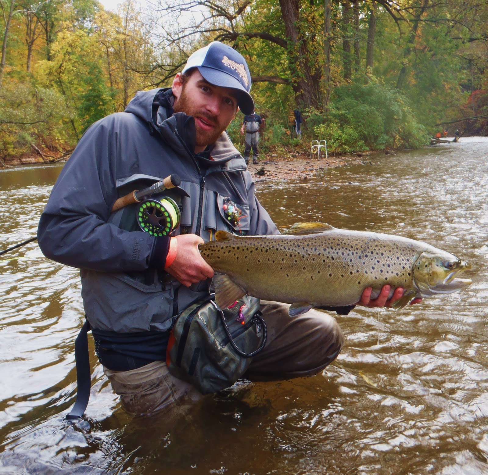 All things fly fishing oak orchard salmon river for Oak orchard fishing report