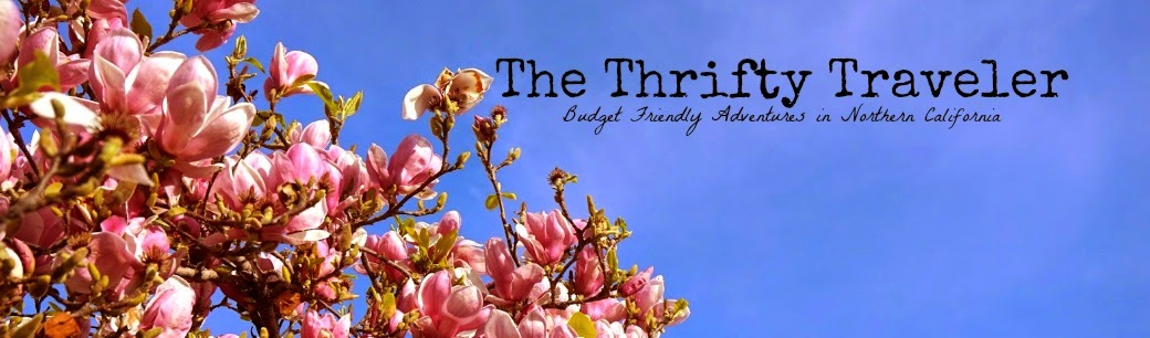 The Thrifty Traveler