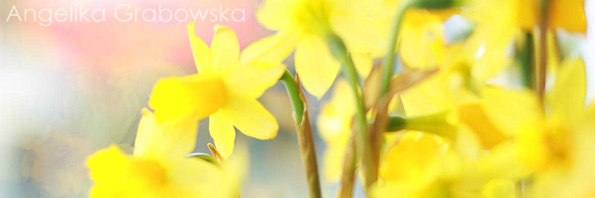 Blog kosmetyczny - Angelika Grabowska