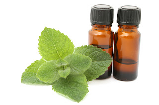 Peppermint Oil And Cinnamon To Treat And Heal Chronic Wounds