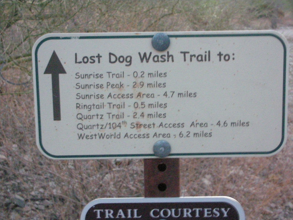 Native arizonan lost dog wash trail quartz trail ringtail trail at the southern most tip of the mcdowell mountains in scottsdale but close to fountain hills there are a network of trails that are within the sonoran solutioingenieria Image collections
