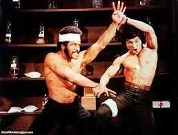 Kung Fu Funnies