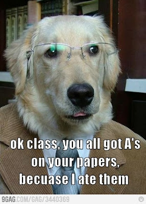 My Dog Ate YOUR Homework. www.hungergameslessons.com