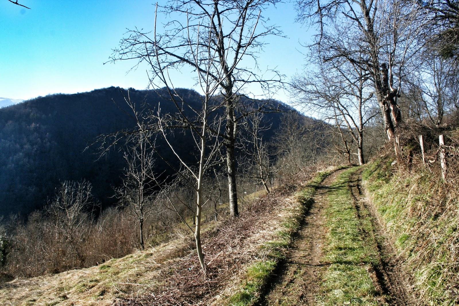 bosna köyü