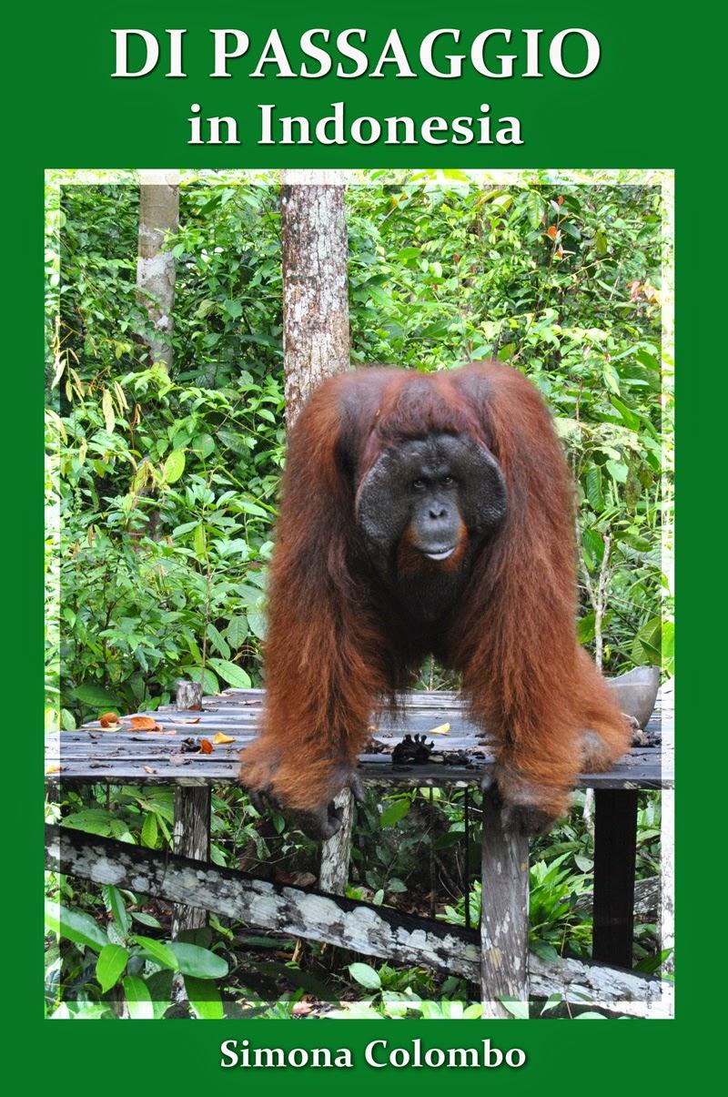 Il mio libro sull'Indonesia