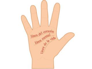 Las tres Líneas principales de la mano