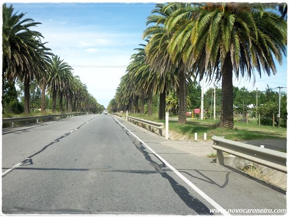 Estrada em Colônia del Sacramento, por novocaroneirocom