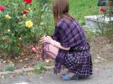 bronto la trandafiri