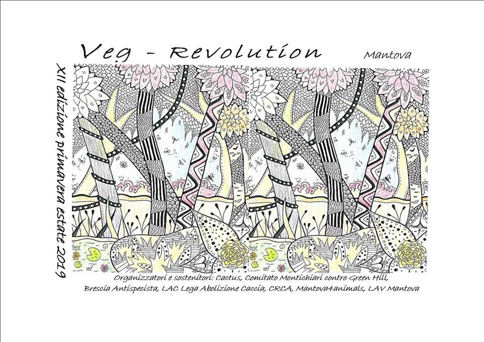 VEG REVOLUTION 2019