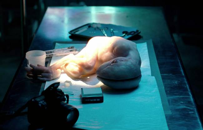 Βρετανοί επιστήμονες έχουν ήδη δημιουργήσει πάνω από 150 υβριδικά έμβρυα ανθρώπου ζώου!