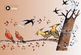 ocells cantant