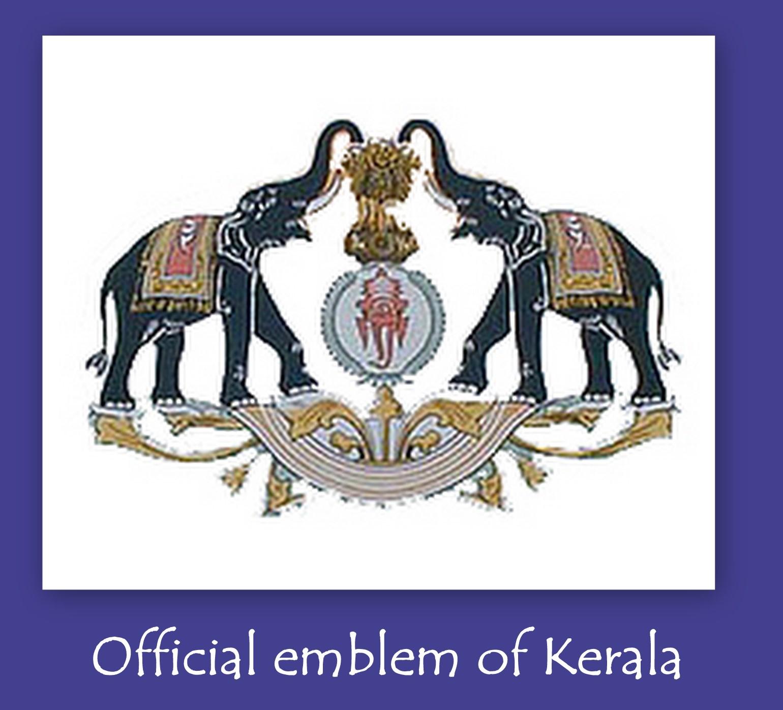 Destination kerala all about kerala official bird the great indian hornbill buceros bicornis buycottarizona Images