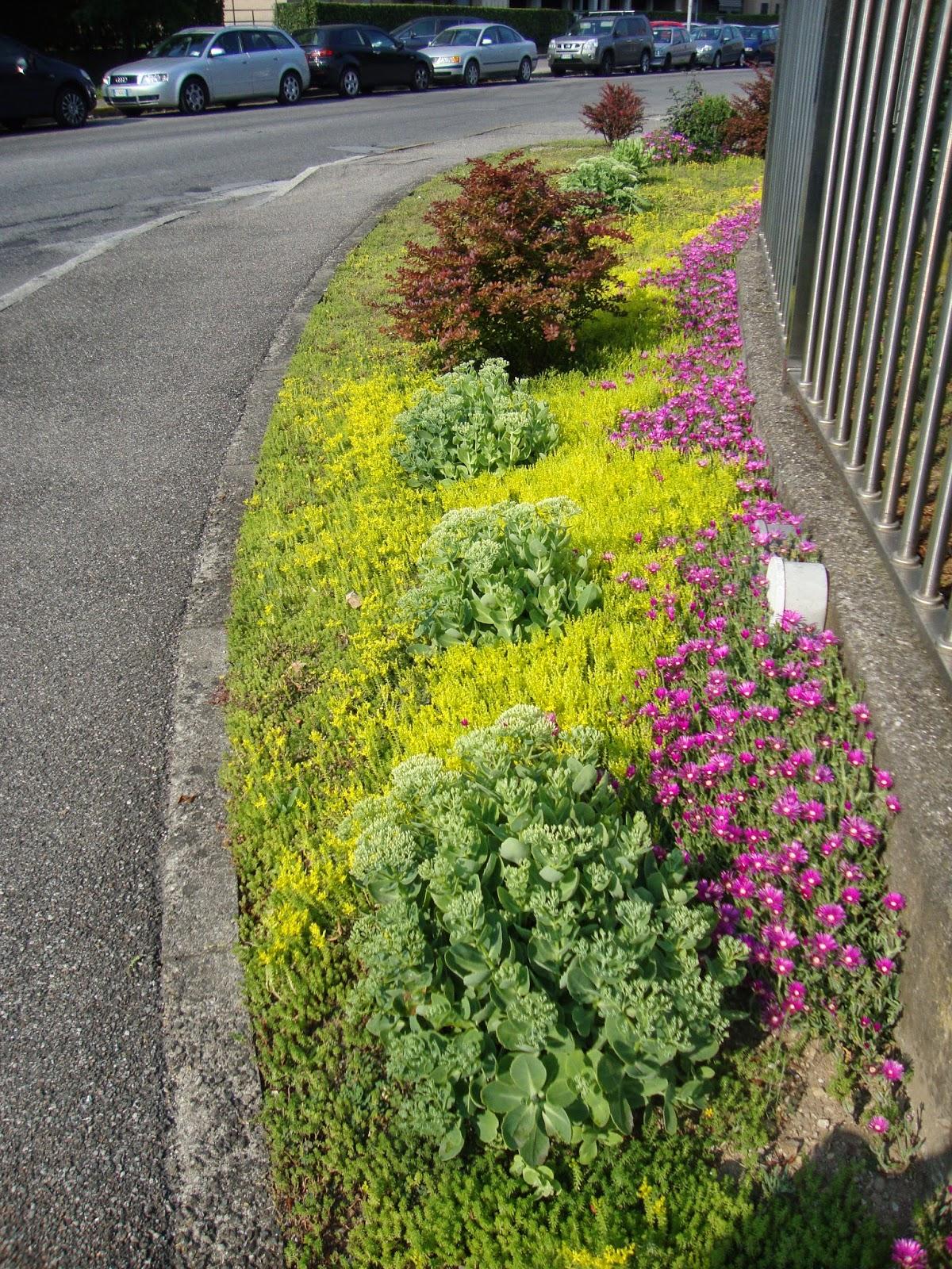 Come realizzare un piccolo giardino come realizzare un giardino di erbe ricola blossom zine - Realizzare un giardino ...