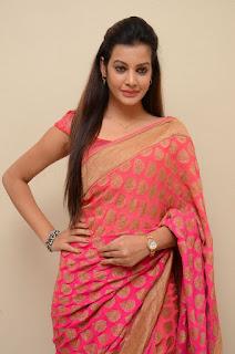 Deeksha Panth in Lovely Orange Saree and Sleeveless Blouse Choli Stunning Pics