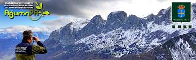 Asociación de Guardas del Medio Natural del Principado de Asturias