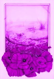 Eflatun Çiçekler