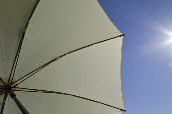 ユーロシルムの傘 内側