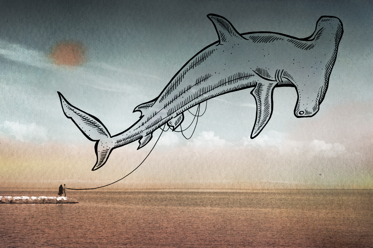 10-Hammerhead Shark-Giulia-Pex-Human-Body-and-the-Ocean-Drawings-on-Photos-www-designstack-co