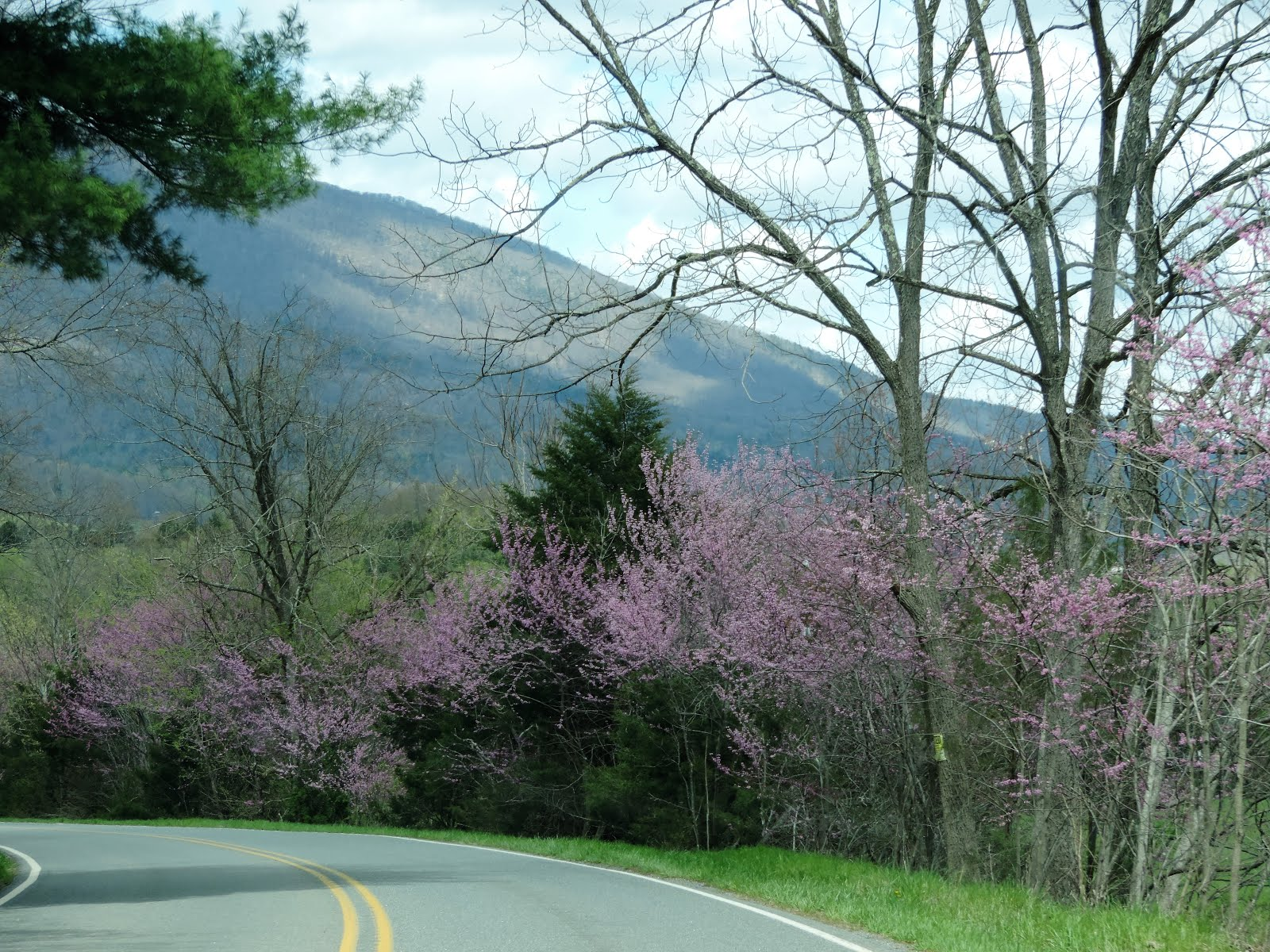 Sister On The Go: WHAT COLOR IS SPRING?