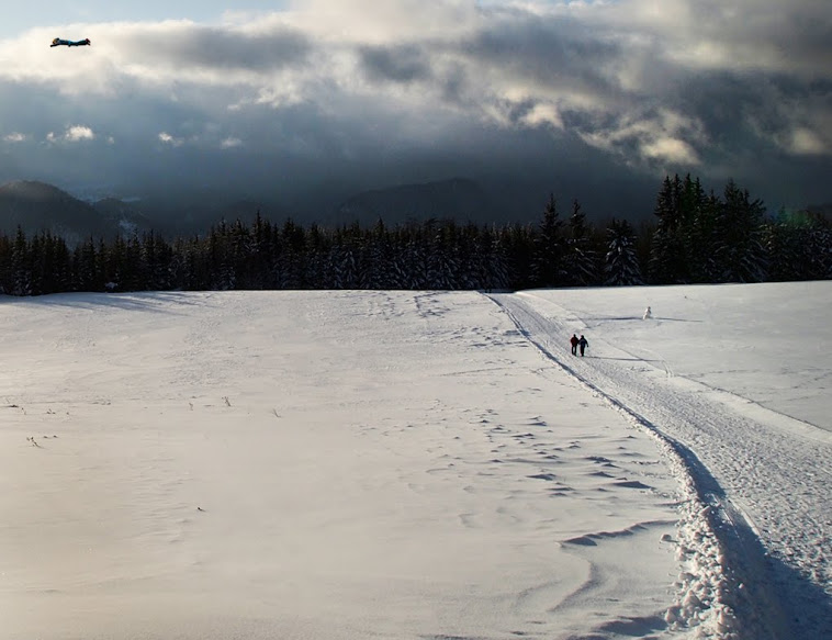 23. Slovakian snowscene with a…fleck?