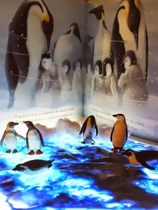 http://clipe-frumoase-cu-ema.blogspot.ro/2014/02/habitatul-pinguinilor-joaca-imaginativa.html