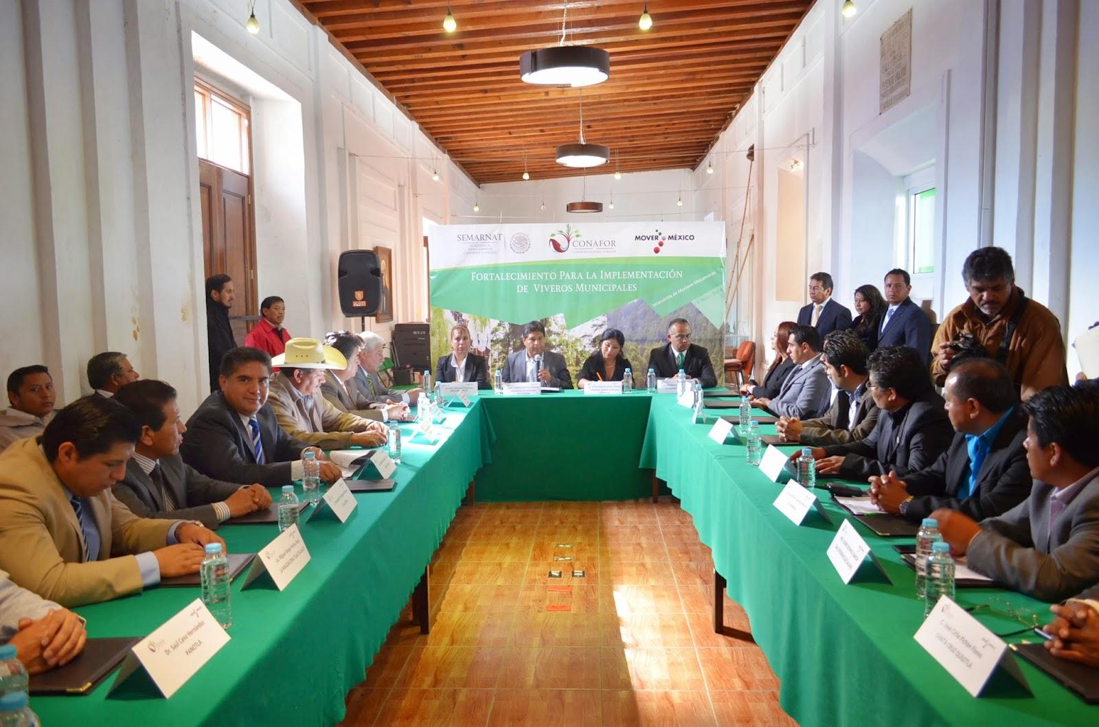 Signa calpulalpan convenio con conafor para implementaci n for Viveros forestales conafor