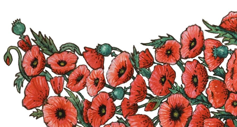 Alphonse Mucha Poppies