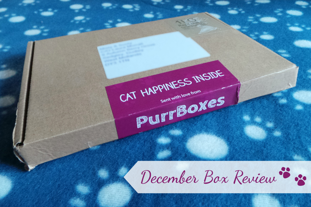 purrboxes review, purrbox review, cat box review, monthly cat box review, cat subscription boxes, pet blogger, cat blogger, pet blog, uk pet blog, uk cat blog, subscription box for cats