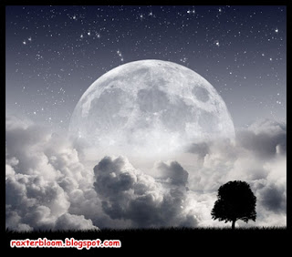 8 Fakta Paling Aneh tentang Pembentukkan Bulan - raxterbloom.blogspot.com