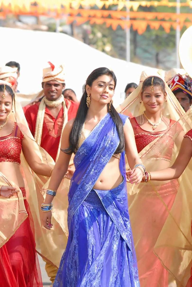 Shriya saran in blue saree from nuvvu nenu