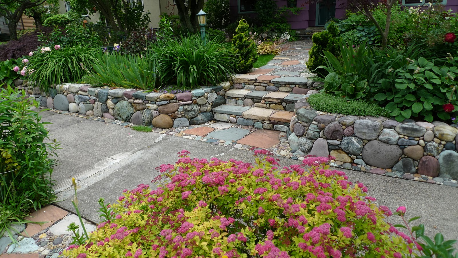 Jeffrey Bale39s World Of Gardens Peterson39s Rock Garden