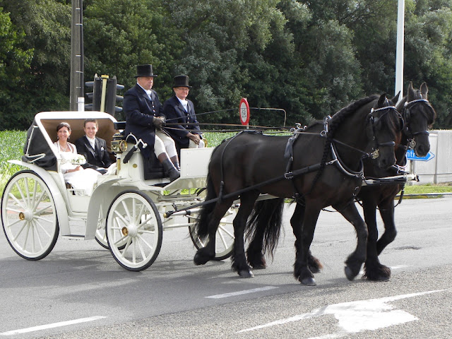 Herent Huwelijk Karien Gert 18 juni 2011