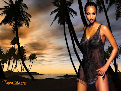 Top model Tyra Banks - Assorted wallpapers pic 1