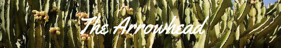 Arrowhead Vintage