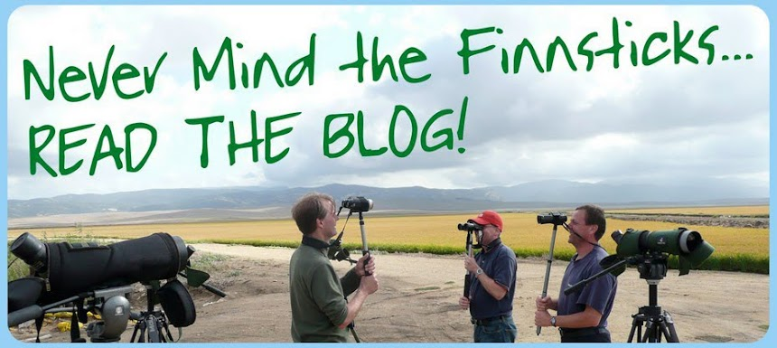 Never Mind The Finnsticks - Read The Blog!