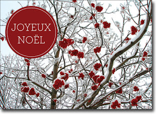 Happy-Christmas-2015-Greeting-in-French
