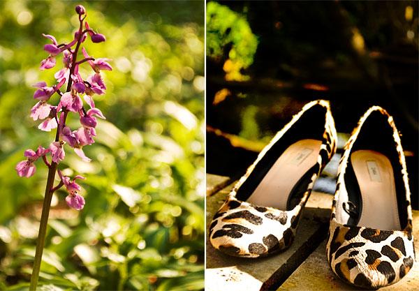 Psynopsis Zara Leopard Shoes Flower Collage