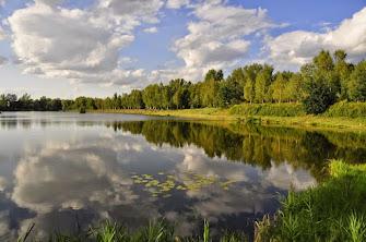 Piękno przyrody Ziemi Oświęcimskiej
