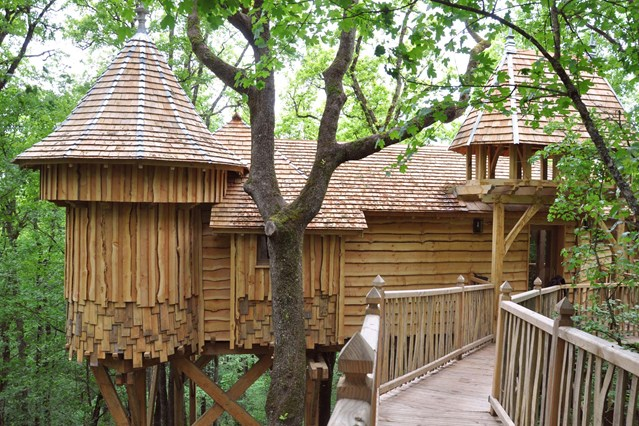 Habitación en la copa de los árboles