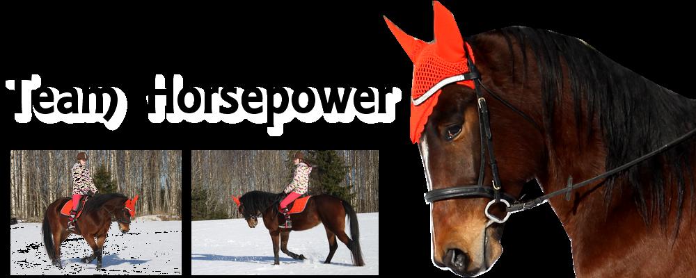 Team Horsepower