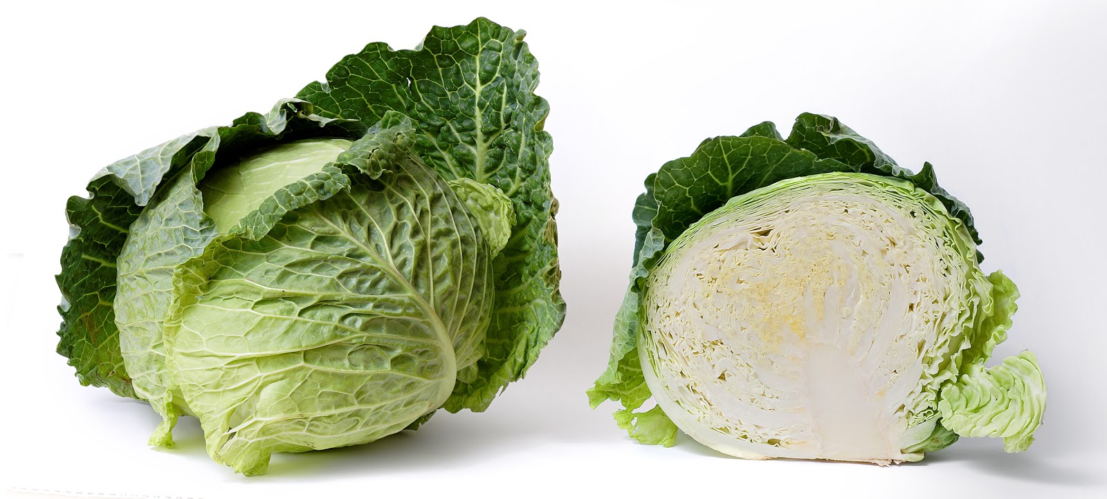Cabbage and cross section on