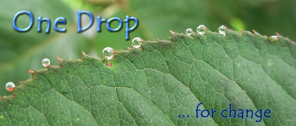 One Drop for Change