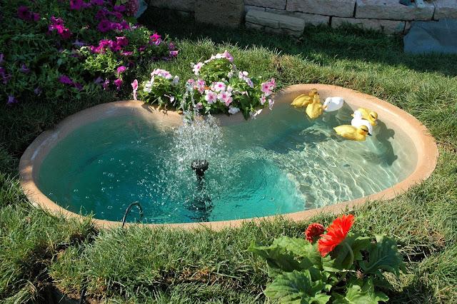 Pesci per laghetto da giardino affordable koi pietra for Laghetti artificiali per tartarughe